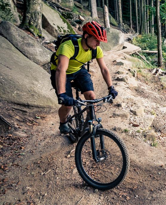 Profil cycliste